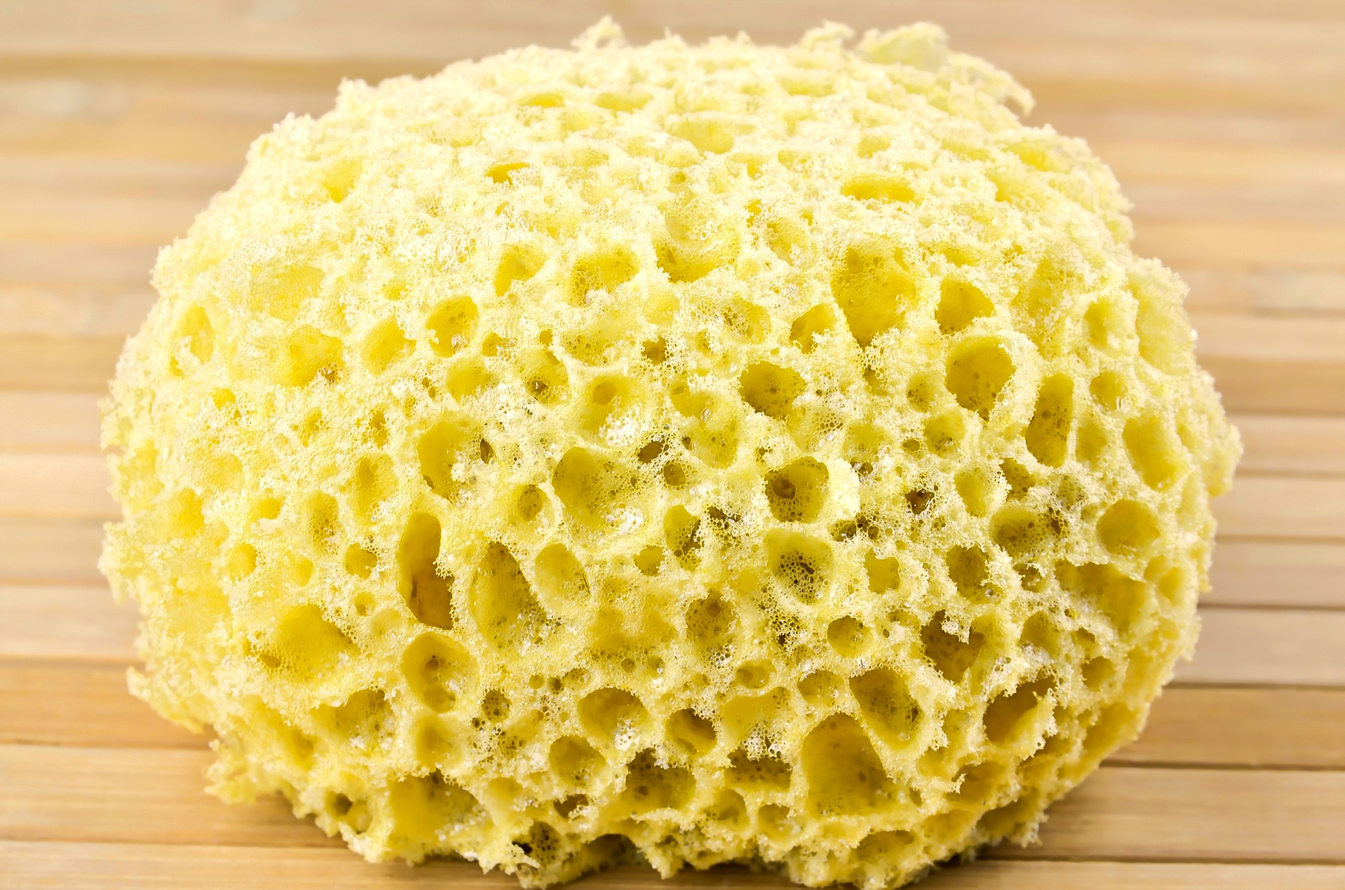 sponge-for-washing-1212612_1920.jpg